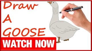 How To Draw A Goose -  Learn To Draw - Art Space