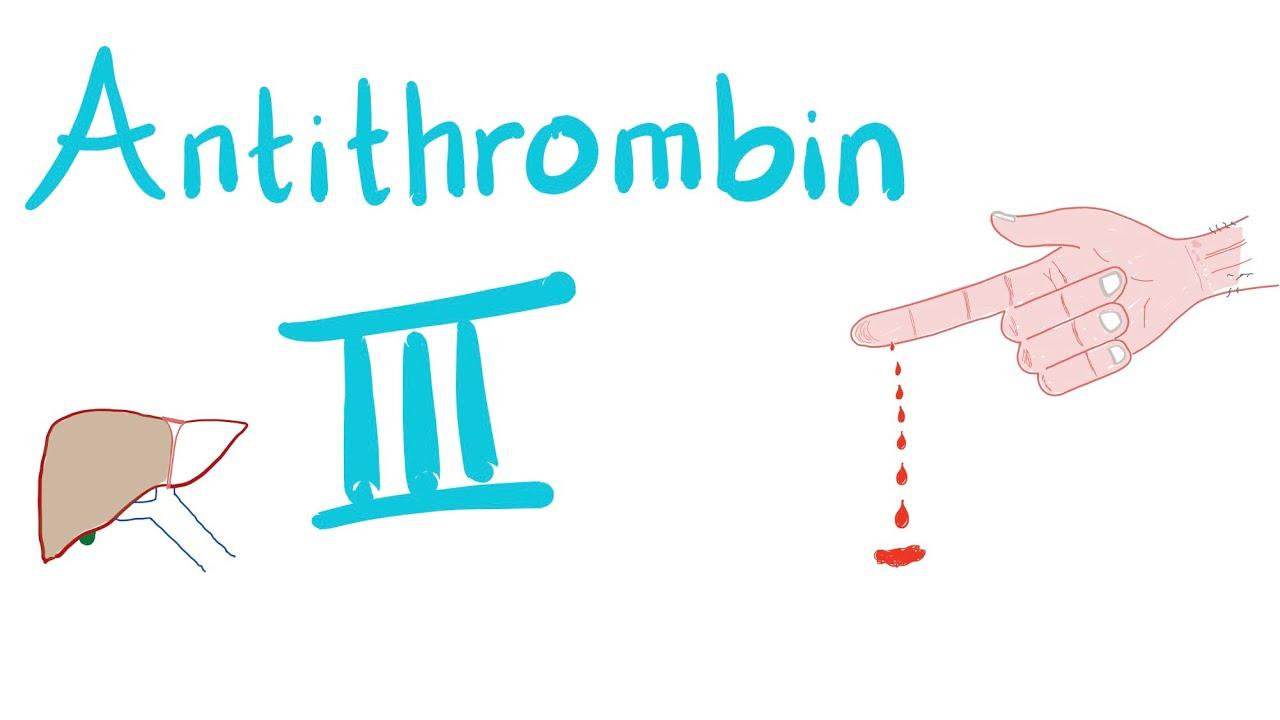 Hanttihommia
