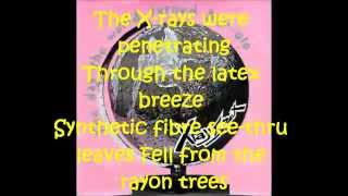 X-ray Spex - The Day the World turned Day-Glo (lyrics)