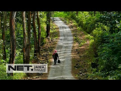 Pasti Pada Gak Tau Kan, Daerah Ini Pernah Jadi Ibukota Jawa Tengah - NET JATENG