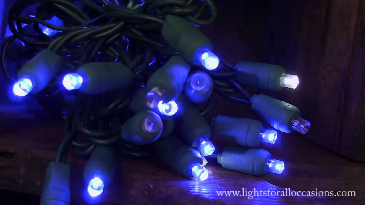 LED String Lights, Blue Wide Angle Bulbs, Cool White Twinkle - YouTube