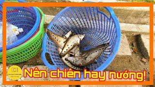 Phát hiện thú vui tao nhã bên trong công viên Lê Thị Riêng | Sài Gòn ngày nay ✔️ lovely saigon
