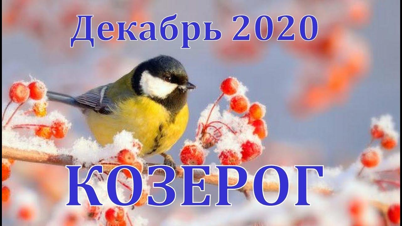 КОЗЕРОГ ДЕКАБРЬ 2020 ТАРО ПРОГНОЗ РАБОТА, ДЕНЬГИ,ОТНОШЕНИЯ