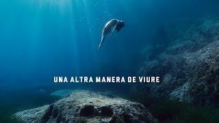 """[BSO] """"Una altra manera de viure"""". Estrella Damm 2019."""
