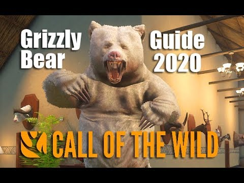 TheHunter: Call Of The Wild - Grizzly Bear Guide 2020