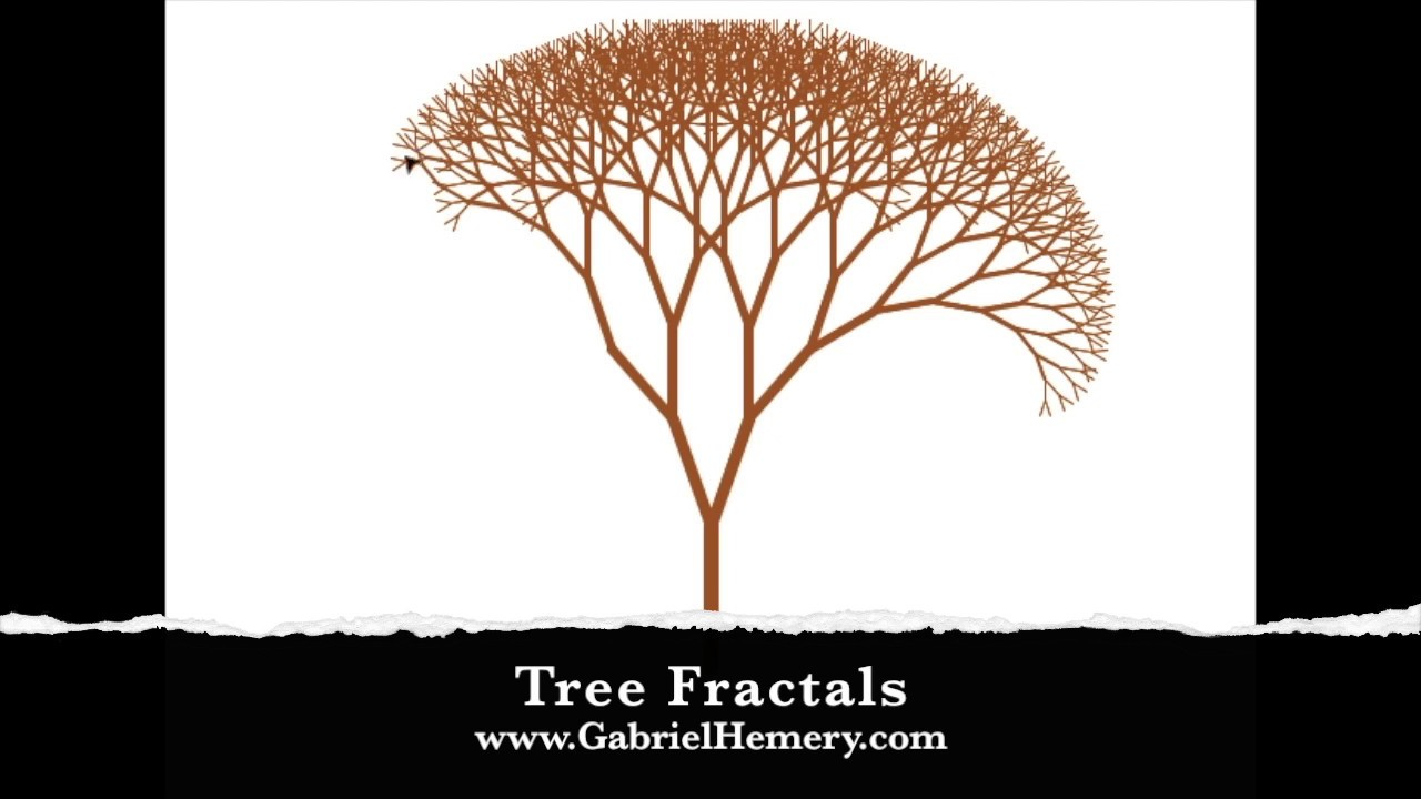 The art and math of tree fractals | Gabriel Hemery
