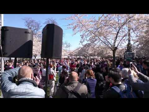 Copenhagen Sakura Festival 2