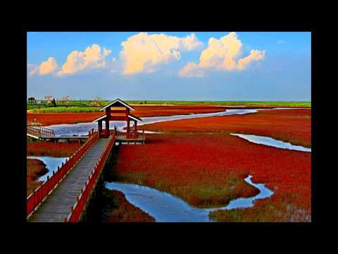 Panjin Red Beach 2016