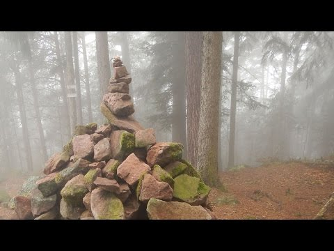 Walking series: Vosges France - Hiking Taennchels Mystical Forest #4