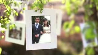 Свадебный альбом дерево