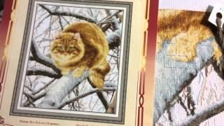 Вышивка крестиком. Золотое руно, рыжий кот. Отчёт 4.
