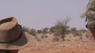 Blesbok Hunting in Namibia Part 2