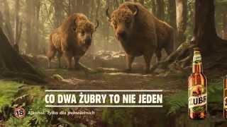 Reklama piwa Żubr – Co dwa Żubry, to nie jeden [Żubr official] 2014