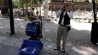 Уличный музыкант в садах Боргезе (Рим)