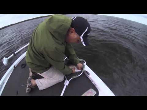 Botany Bream fishing