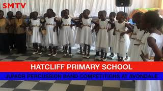 Avondale Primary Sch Perscussion Band The Best Performers 2018