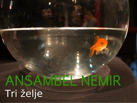 ANSAMBEL NEMIR  -  Tri želje [Uradni videospot]