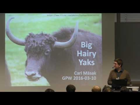 gpw2016 Carl Mäsak - Big Hairy Yaks