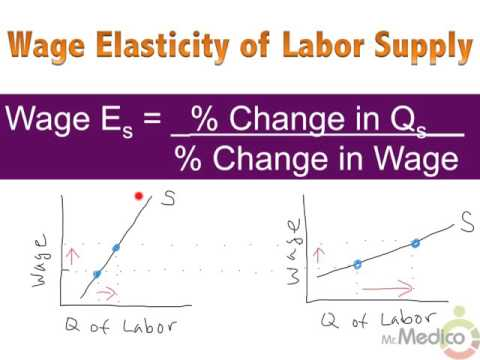 Wage Elasticity Of Labor Supply Interest Rate Elasticity Of