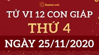 Tử vi 12 Con Giáp 25/11/2020 - Xem Tử Vi 12 Con Giáp ngày 25 tháng 11 năm 2020 | Xemtuvi.mobi