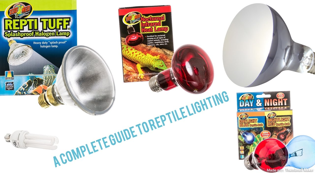 A Complete Guide to Reptile Lighting!  sc 1 st  YouTube & A Complete Guide to Reptile Lighting! - YouTube azcodes.com
