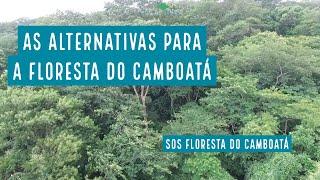 Ideias para salvar a Floresta do Camboatá