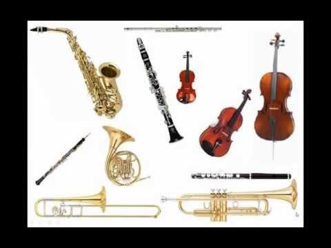 Music store | Violin | Instrument | Drums | Trumpet | Visalia | Ca | 93277 | 559-635-0156
