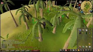 Attempting to solve a clue by juggling doable karamja steps