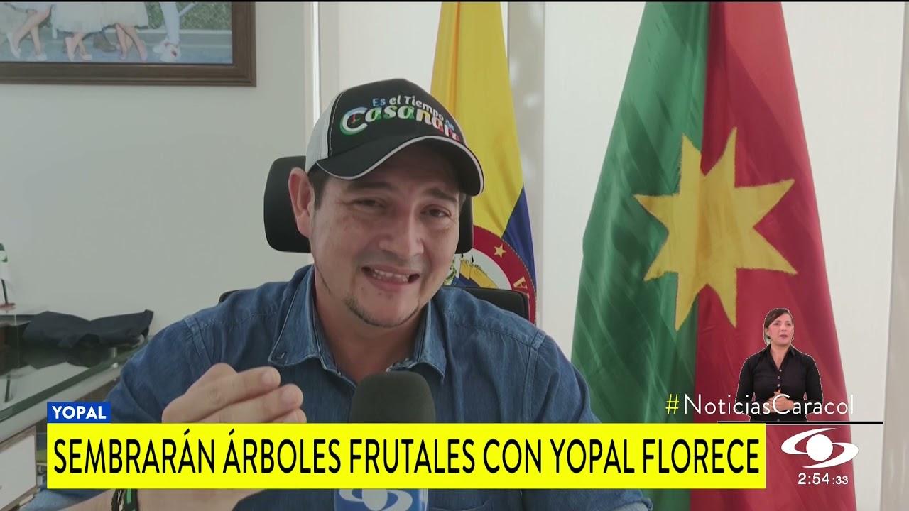YOPAL FLORECE, CON ESTA INICIATIVA SE BUSCA RECUPERAR ZONAS VERDES Y PROTEGER LOS ECOSISTEMAS