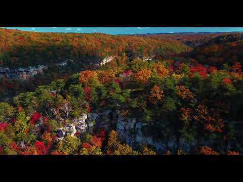 Canon Rebel T7 Digital Slr Camera | Fall Colors Come Alive