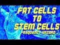 CONVERT YOUR FAT CELLS INTO STEM CELLS FAST! SUBLIMINAL FREQUENCY WIZARD