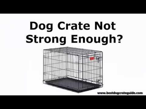 Heavy Duty Gorilla Tough Indestructible Escape Proof Dog Crates