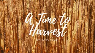 Bayside Christian Church -  A Time To Harvest - Ps Ross Davie - 10/05/2020