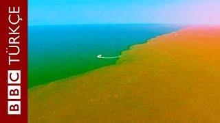 Sarı Irmak Ve Bohai Denizi Buluşunca...