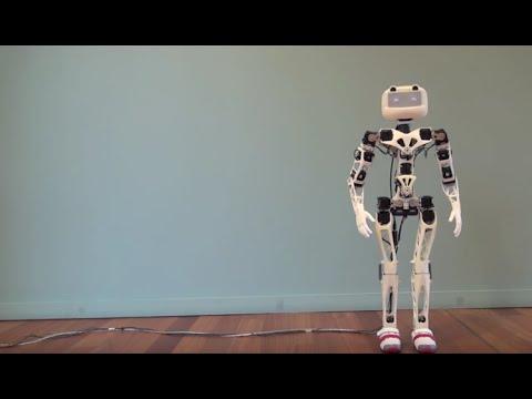 Poppy Humanoid