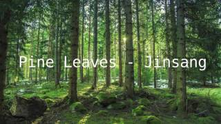pine leaves jinsang