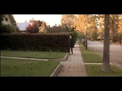 Melhores cenas de Michael Myers (filme Halloween)