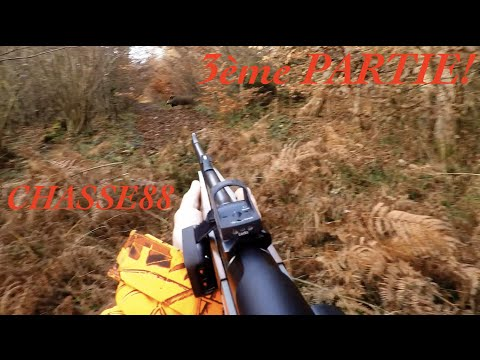 Chasse Au Sanglier En Battue Dans Les Vosges 3 ème Partie Saison 2015/2016 Blaser R8