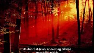 Dark tranquility - Insanity