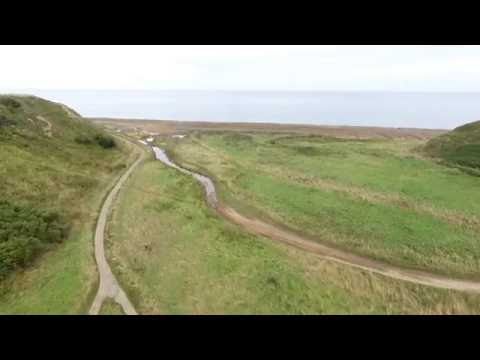 Horden Viaduct and Beach area