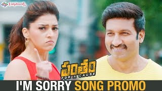 I'M Sorry Video Song Promo   Pantham Movie Songs   Gopichand   Mehreen   Sri Sathya Sai Arts