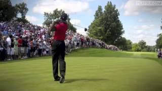 Tiger Woods Tribute