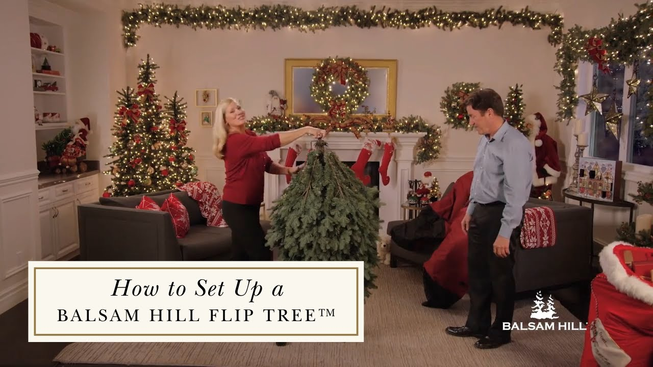How to Set Up a Flip Tree™ - YouTube