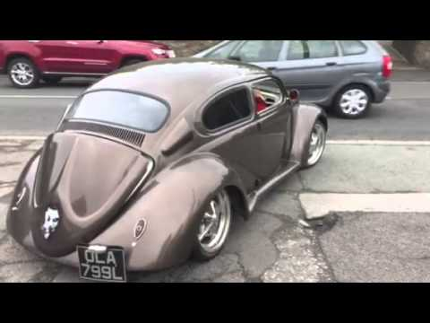 Roof Chop Beetle Project