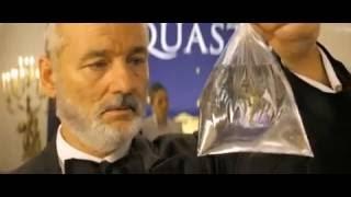 Позитивные фильмы: Водная жизнь (The life aquatic with Steve Zissou)