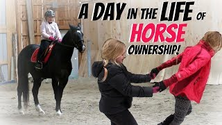 A DAY IN THE LIFE OF A HORSE OWNER! Day 107 (04/17/18)