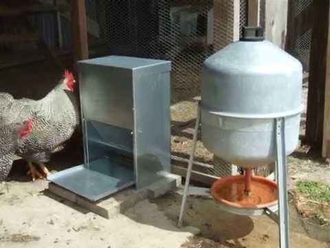Poultry Self Feeder - YouTube