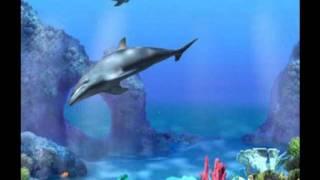 El Mar, Ray Conniff   Instrumentales De Oro