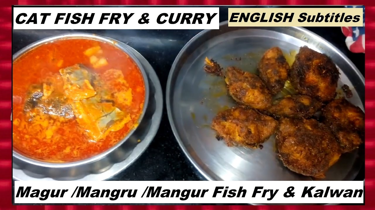 Cat fish magur mangru mangur fish fry curry for How to make fish fry
