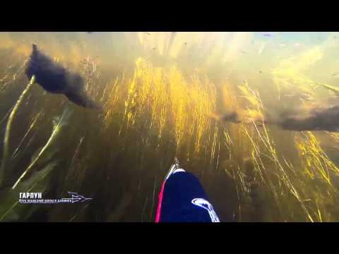 охота и рыбалка в казахстане вко